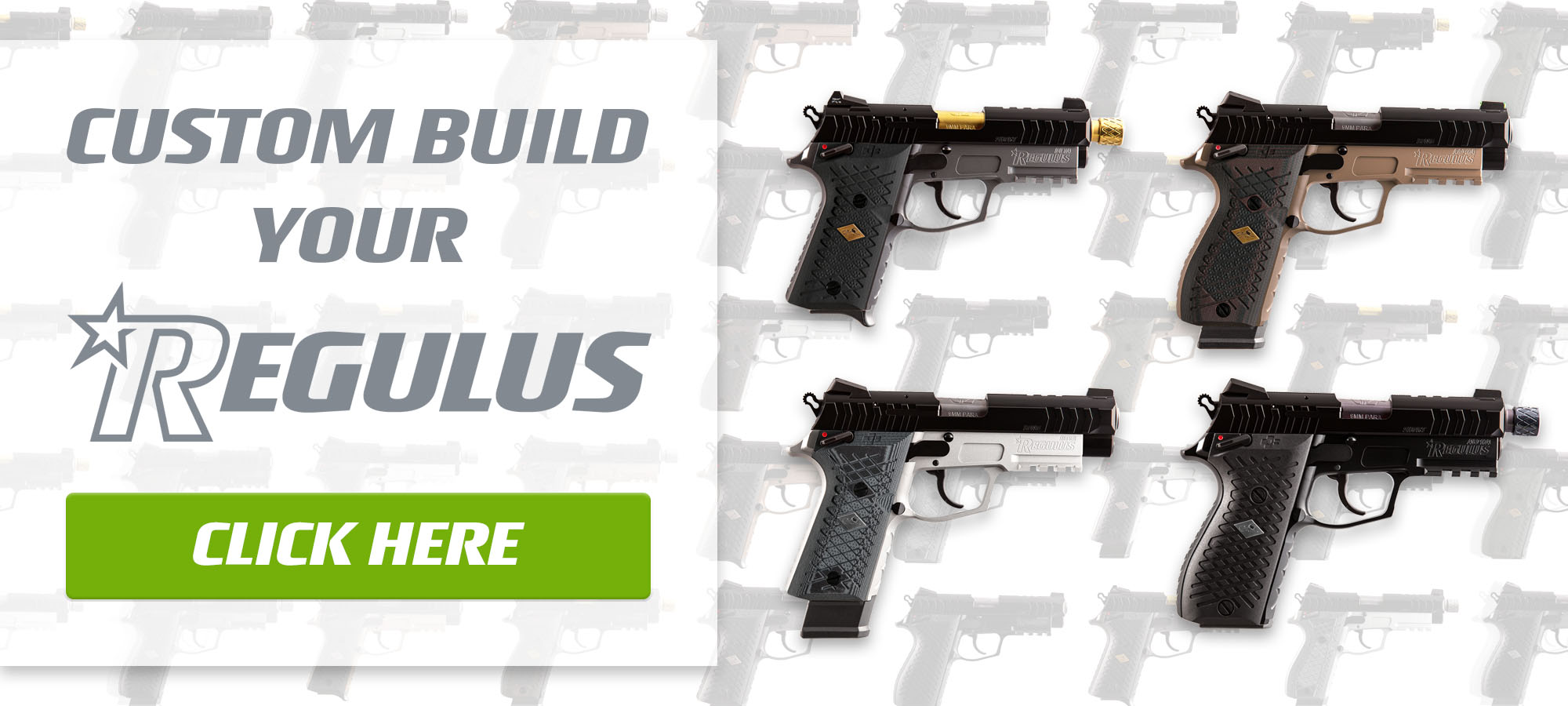 Build Your Regulus